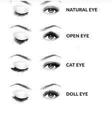 eyelash 2